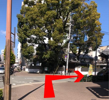 一つ目の交差点を右に曲がる。(常光寺の大きな楠の木が目印です。)